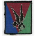 INSIGNE TISSU 10ième division parachutiste 1956 - 1961