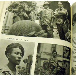 PLAQUETTE CAMERONE INDOCHINE - AFRIQUE du NORD 1954 - 1955
